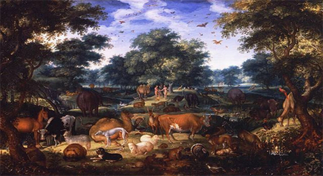 Questions about Animal Death before the Fall of Man